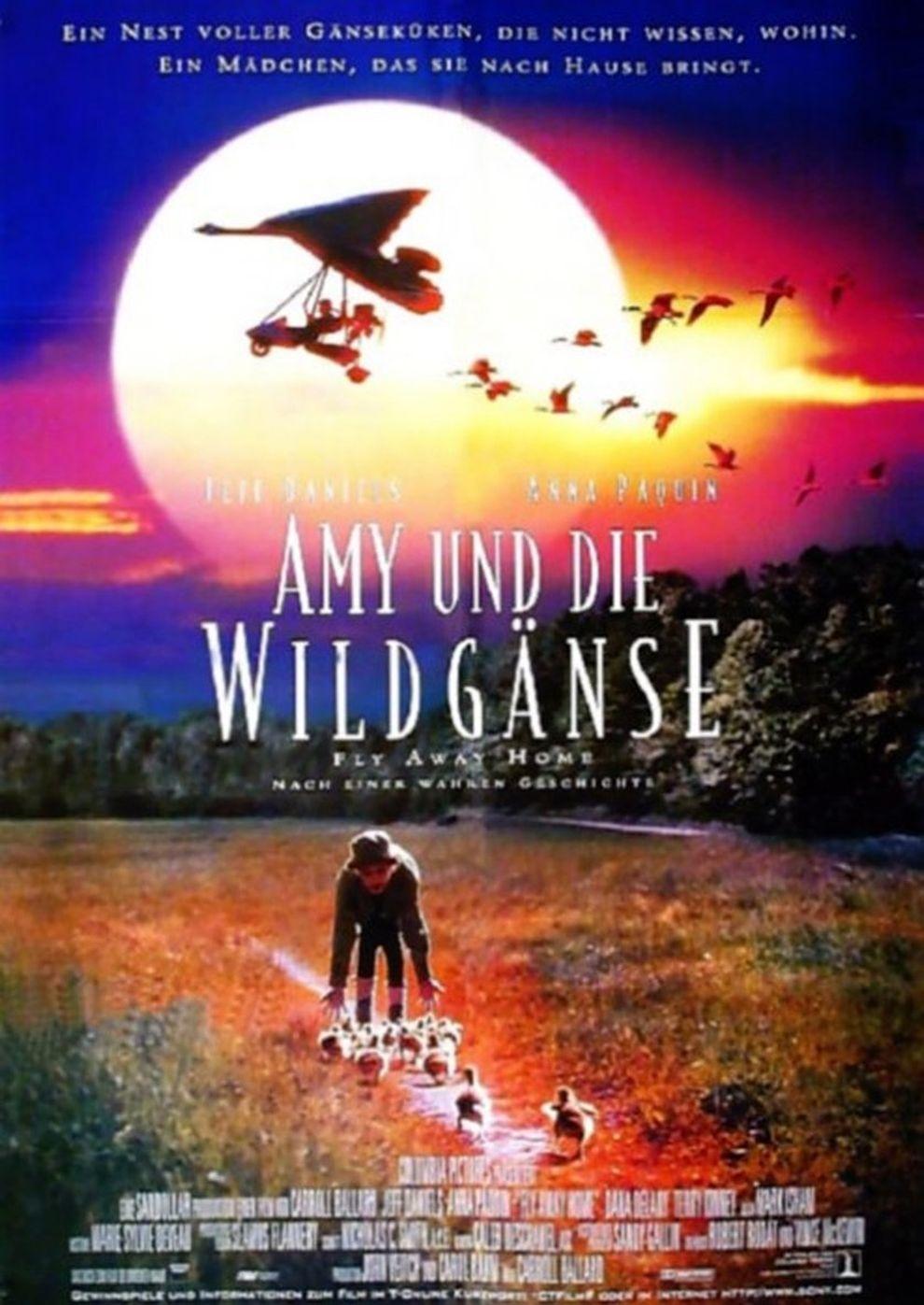 Amy und die Wildgänse (Poster)