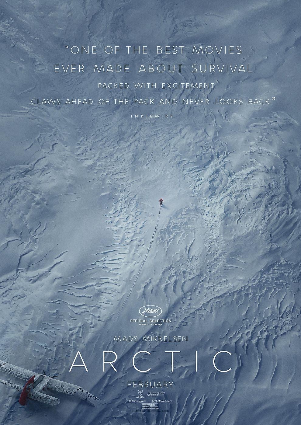 Arctic (Poster)