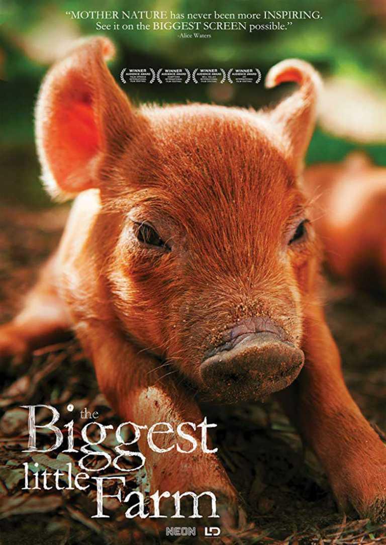 Unsere große kleine Farm (Poster)