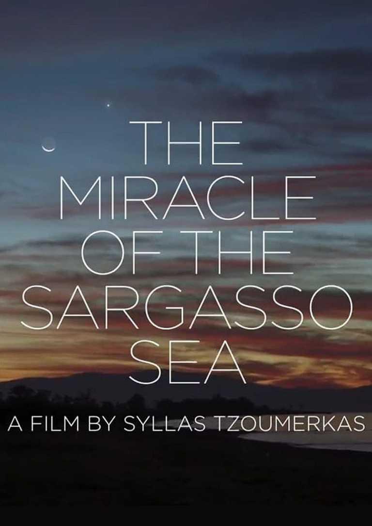 Das Wunder im Meer von Sargasso (Poster)