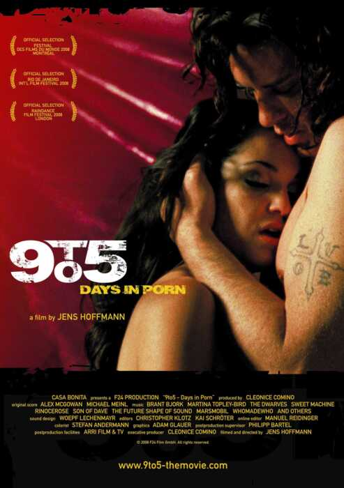 9to5 - Days in Porn (Poster)