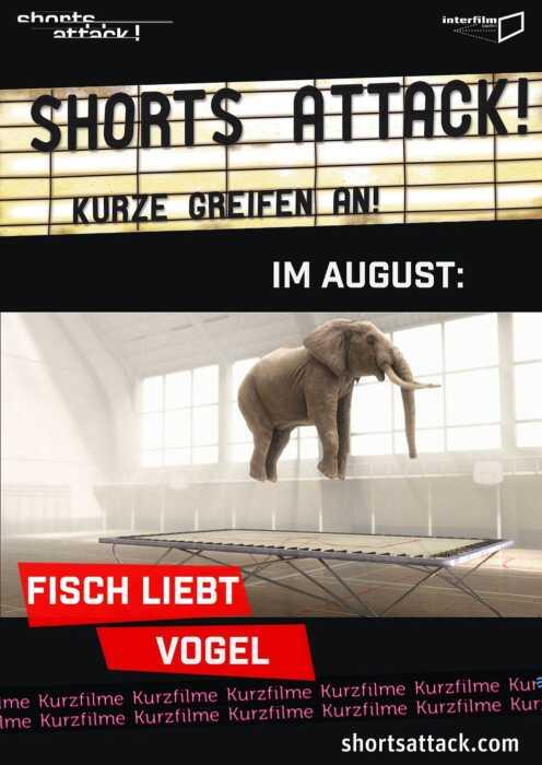 Shorts Attack 2020: Fisch liebt Vogel (Poster)