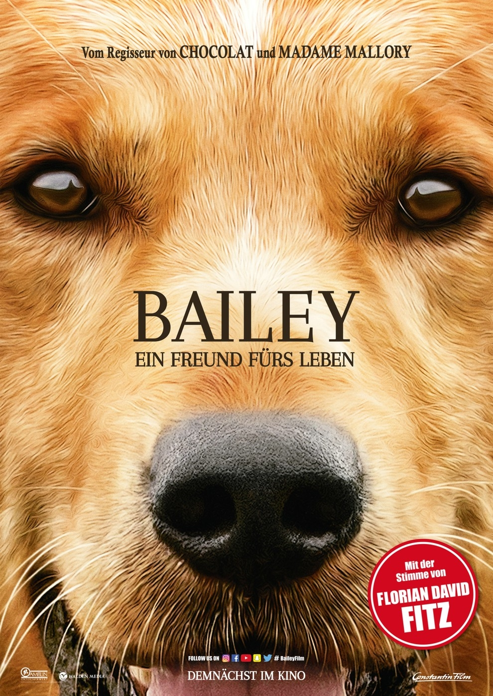 Bailey - Ein Freund fürs Leben (Poster)
