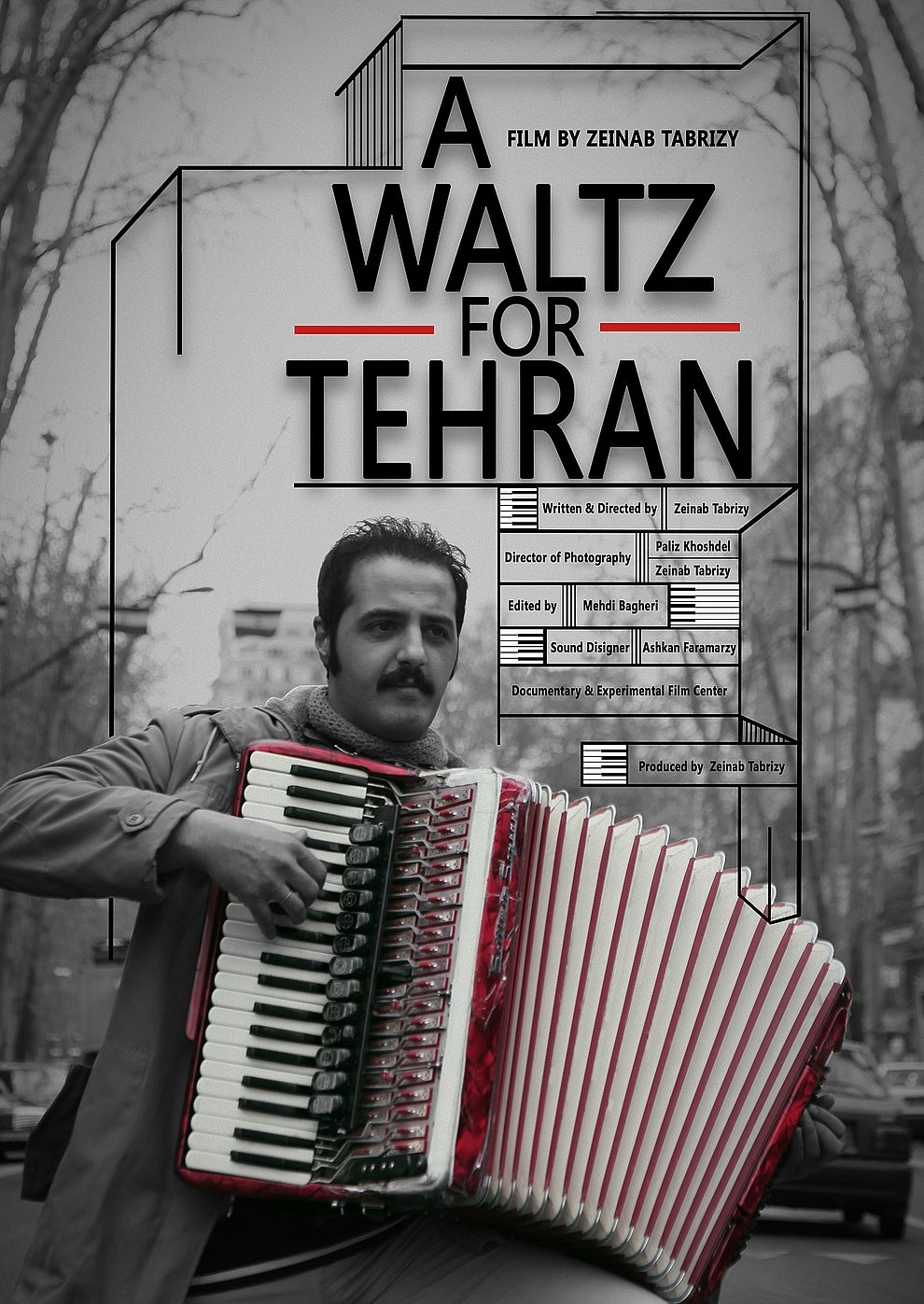 A Waltz for Tehran & The process (Poster)