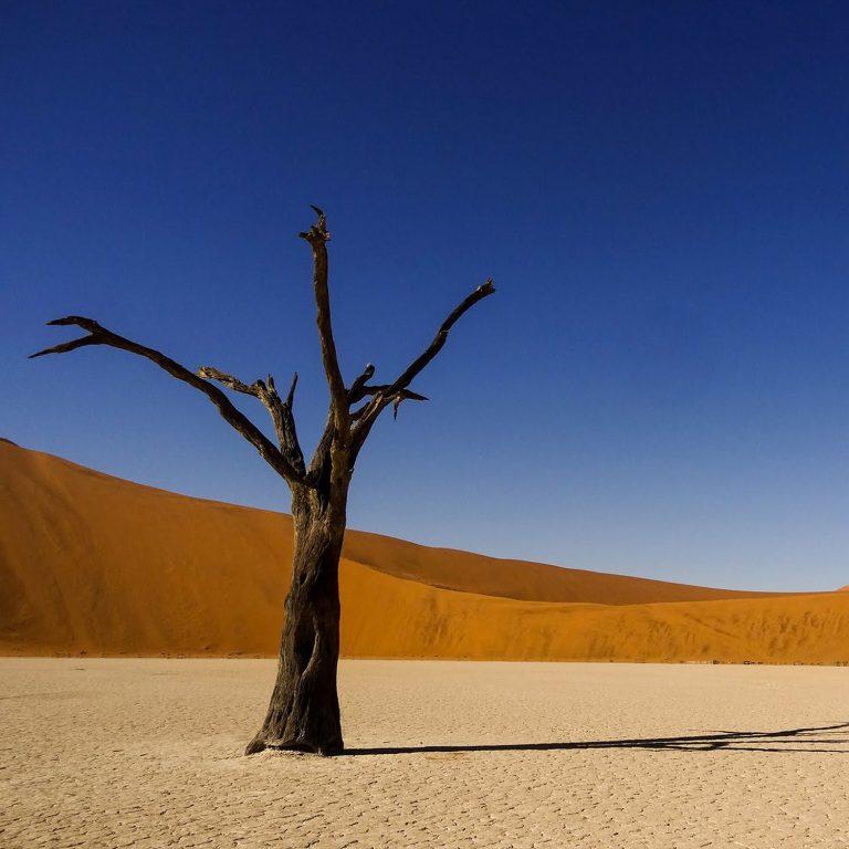 Anderswo. Allein in Afrika (Filmbild 3)