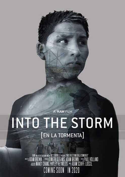 Into the Storm (Poster)
