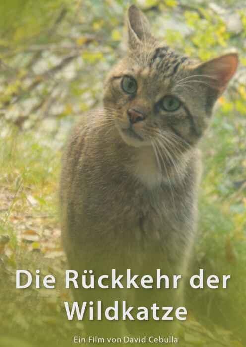 Die Rückkehr der Wildkatze (Poster)