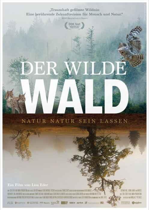 Der wilde Wald - Natur Natur sein lassen (Poster)
